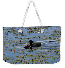 Pied Billed Grebe Lake John Swa Co Weekender Tote Bag