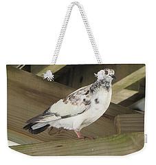 Pigeon Under Daytona Beach Pier  Weekender Tote Bag