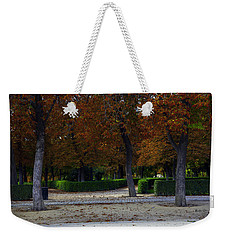 Weekender Tote Bag featuring the photograph Pigeons Enjoying View by Madeline Ellis