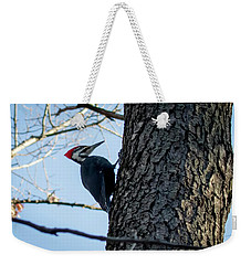 Pileated Woodpecker  Weekender Tote Bag