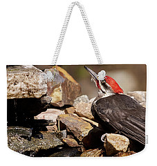 Pileated Woodpecker2 Weekender Tote Bag