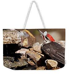 Pileated Woodpecker2 Weekender Tote Bag