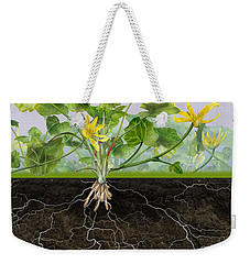 Pilewort Or Lesser Celandine Ranunculus Ficaria - Root System -  Weekender Tote Bag