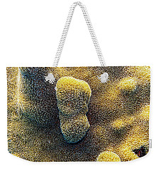 Weekender Tote Bag featuring the photograph Pillar Coral by Perla Copernik