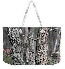 Pine And Birch Weekender Tote Bag