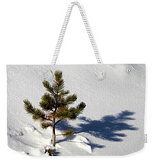Weekender Tote Bag featuring the photograph Pine Shadow by Shane Bechler