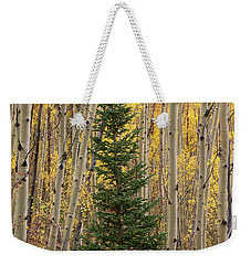 Pine Tree Among Aspens  4874 Weekender Tote Bag