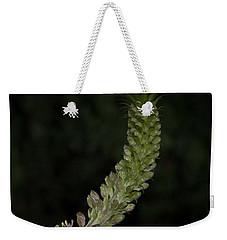 Pineapple Lily Weekender Tote Bag
