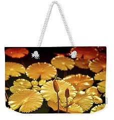 Pineapple Pond Weekender Tote Bag by Dennis Baswell
