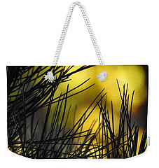 Pineview Weekender Tote Bag by Betty-Anne McDonald