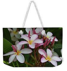 Weekender Tote Bag featuring the photograph Pink And White Plumeria by Pamela Walton
