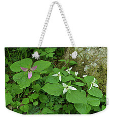 Pink And White Trillium Weekender Tote Bag by Alan Lenk