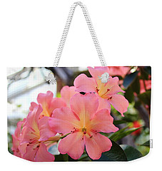Pink And Yellow Vireya Weekender Tote Bag by Karen Silvestri
