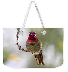 Pink Anna's Hummingbird Weekender Tote Bag