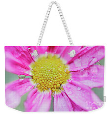Weekender Tote Bag featuring the photograph Pink Aster Flower With Raindrops by Nick Biemans