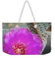 Weekender Tote Bag featuring the photograph Pink Beavertail Cactus  by Saija Lehtonen
