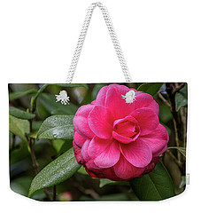 Pink Camelia 02 Weekender Tote Bag by Gregory Daley  PPSA