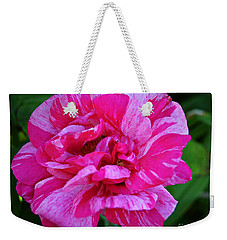 Pink Candy Stripe Rose Weekender Tote Bag