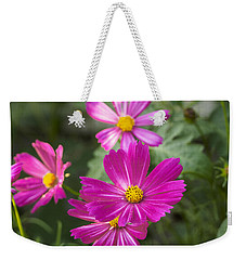 Weekender Tote Bag featuring the photograph Pink Cosmos I by Marianne Campolongo