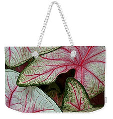 Pink Elephant Ears Closeup Weekender Tote Bag