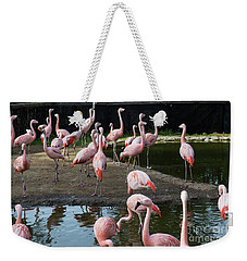 Pink Flamingos Weekender Tote Bag by Suzanne Luft