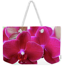 Weekender Tote Bag featuring the photograph Red Orchid by Melinda Blackman