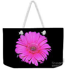 Pink Gerbera On Black Weekender Tote Bag by Linda Bianic