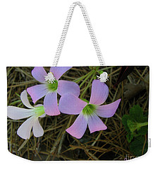 Weekender Tote Bag featuring the photograph Pink Glow by Donna Brown