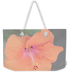 Weekender Tote Bag featuring the photograph Pink Heavenly Hibiscus by Donna Bentley