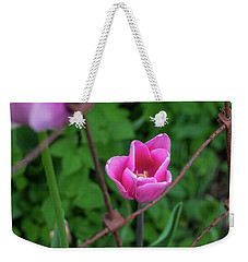 Pink In Stratford Weekender Tote Bag