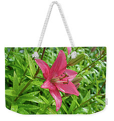 Pink Lily Flowers By Tamara Sushko  Weekender Tote Bag