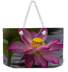 Pink Lotus In Vietnam Weekender Tote Bag