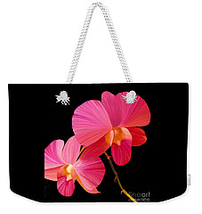 Pink Lux Weekender Tote Bag by Rand Herron