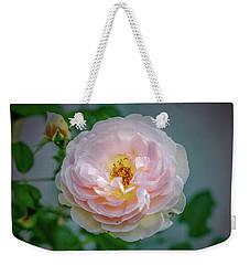 Pink Rose #c3 Weekender Tote Bag