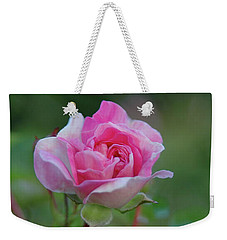 Pink Rose Weekender Tote Bag by Elaine Hunter