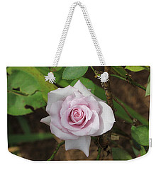 Weekender Tote Bag featuring the photograph Pink Rose by Jerry Battle