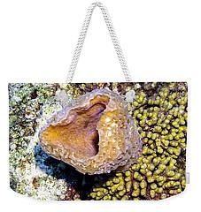 Weekender Tote Bag featuring the photograph Pink Vase Sponge by Perla Copernik
