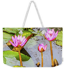 Pink Water Lilies In A Pond Weekender Tote Bag