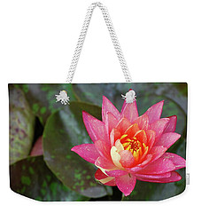 Weekender Tote Bag featuring the photograph Pink Water Lily Beauty by Amee Cave