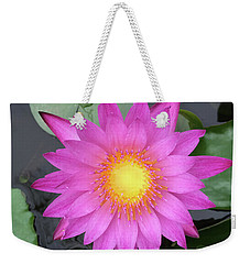 Pink Water Lily Flower Weekender Tote Bag by Tony Grider