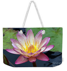 Pink Water Lily Weekender Tote Bag by Teresa Zieba