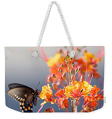Pipevine Swallowtail Weekender Tote Bag by Dan McManus