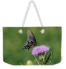 Weekender Tote Bag featuring the photograph Pipevine Swallowtail by Sandy Keeton