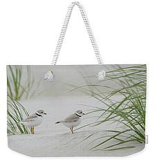 Piping Plovers Weekender Tote Bag