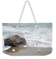 Weekender Tote Bag featuring the photograph Piping Plovers by Robin-Lee Vieira