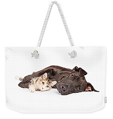 Pit Bull Dog And Kitten Cuddling Weekender Tote Bag