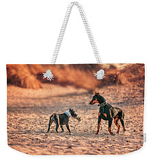 Weekender Tote Bag featuring the photograph Pitbull And Doberman by Peter Lakomy