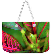 Weekender Tote Bag featuring the photograph Plants In Hawaii by D Davila