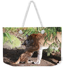 Weekender Tote Bag featuring the photograph Playful Hugs by Laddie Halupa