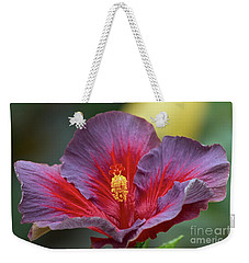 Plum Wonderful Weekender Tote Bag